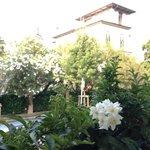 Blick aus dem Frühstückswintergarten