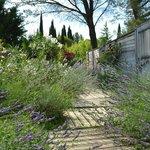 Jardins photographiques