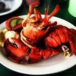 seagull restaurant lobster supper