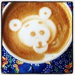 Cappuccino teddy bear