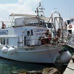 Barca Delfino Bianco
