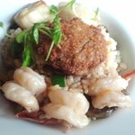 Crab cake with scallops and shrimp over risotto.