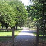 Piazza D'Armi - Parco cittadino