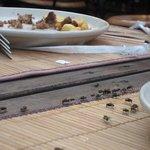 les mouches à table