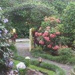 Entering the garden