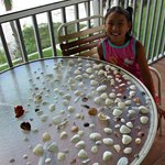 Seashell treasures drying on our balcony!  302 N Crescent Arms
