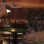 Eagles Nest Exhibit