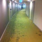 6th floor corridor