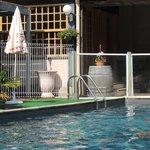 piscine : bric à brac,pas propre,très limite,entourée de petits morceaux de carpettes vertes ,sa