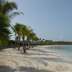 Jumby Bay Beach