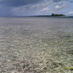View from house reef