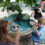 Outdoor eating... ice cream & pie!