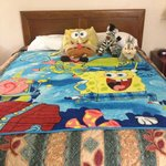 My son's bed. :)