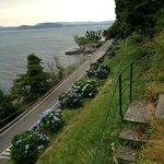 Weg zum See 2