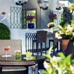 Bar bouganville