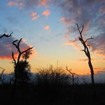 Hlane Royal National Park Foto
