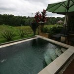 Private pool and view on rice field