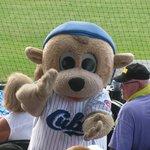 Daytona Cubs !