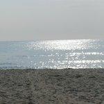 Sulla spiaggia i Vada ( LI )