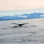 Sitka Alaska, June 2013