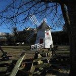 Replica Windmill