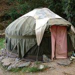 The Apple Tree Yurt 4