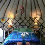 The Apple Tree Yurt 2
