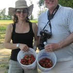 Vermonters enjoy picking berries in NY!