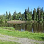 Chena River, just outside the cabins