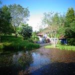 La maison vue de l'étang