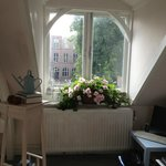 Begonias and a large window