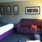 Foto de AmericInn Hotel & Suites Duluth South — Black Woods Convention Center