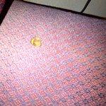 Cigarette burn in cushion of desk chair