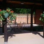 beautiful stone patio and pergola