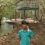 in salim ali bird sanctuary
