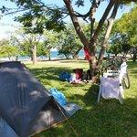 Lovely grassy campsite
