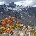 A little bit steeper walk, at Rossbodenjoch