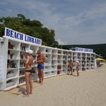 free beach library (new for 2013)