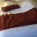Bed in room (excuse the sleeping beauties!)