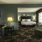 Deluxe King Suite Guest Room