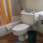 small-the toilet was on an angle-no amenities