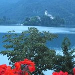 View from our room of Bled Island. Enchanting