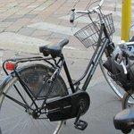 bike ride in  Milan