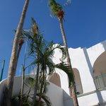 Beautiful Hotel Mar de Cortez!