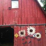 Really cool, old barn