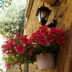 basta un vaso di petunie all'ingresso per colorare la tua vacanza