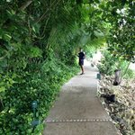 Rainforest path to Fitness/Yoga/Spa/Beach