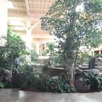 atrium court yard
