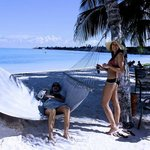 Hotel beach hammock