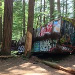 Cars covered with graffiti lying on their side in the woods.